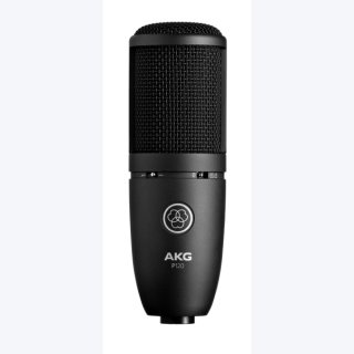 AKG PERCEPTION 120 Mikrofon