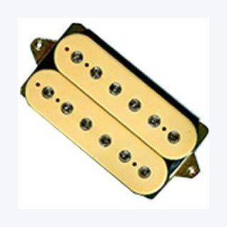 DiMarzio DUALSOUND DP 101