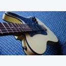 Ray Gerold  I Hybrid Convertible E-Gitarre